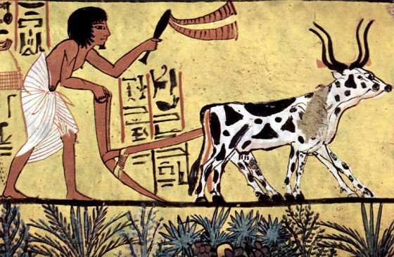 Ancient Egypt Agriculture Facts ~ Ancient Egypt Facts
